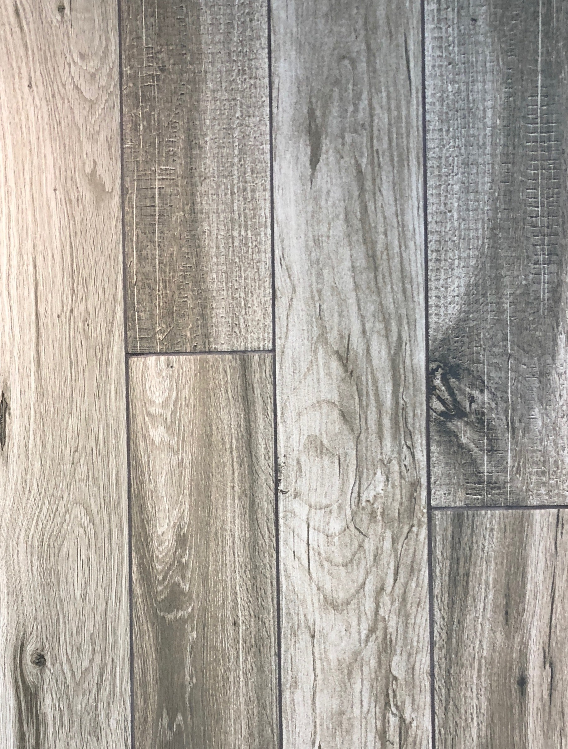 Photo of Zebrawood Maple